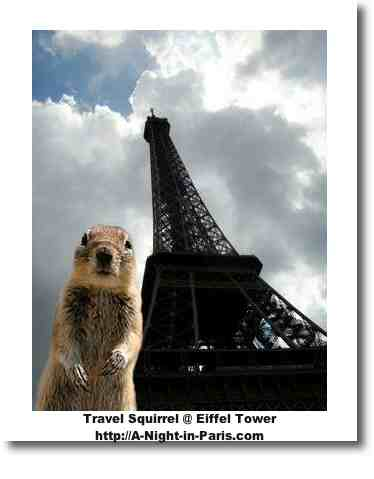 Travel Squirrel in Paris at the Eiffel Tower